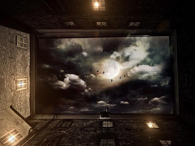Vista del cielo nocturno con aves desplegando sus alas