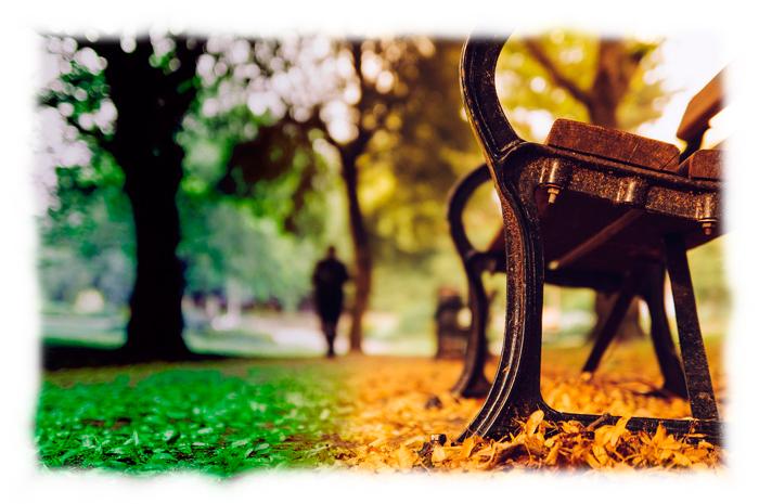 Banco en el parque para ilustrar el relato Paradójica actitud